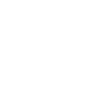 Young Ethos